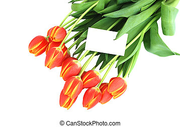 Bunch of tulips with a blank card