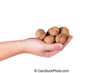 Bunch of walnuts in hands.