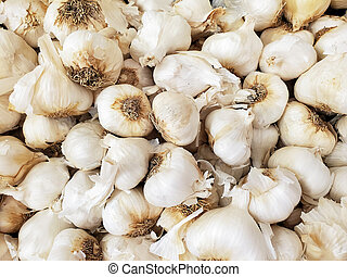 bunch of whole garlic - close up of fresh garlic at farmers ...