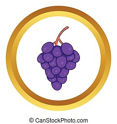 Bunch of wine grapes vector icon