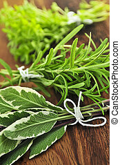Bunches of assorted fresh herbs close up on wooden cutting board