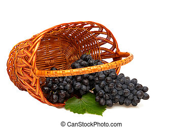 Bunches of grapes  in basket