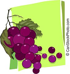 bunches of grapes with leaves