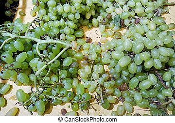 Bunches of green grapes in container closeup