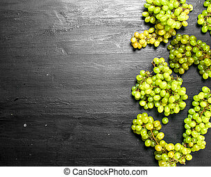 Bunches of green grapes.