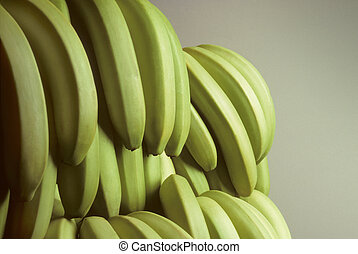 Bunches of green unripe bananas