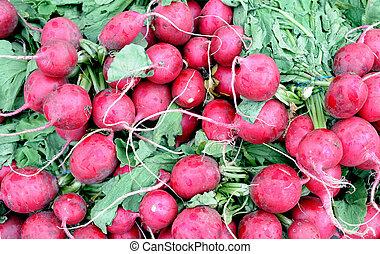 bunches of organic radish in farmer market