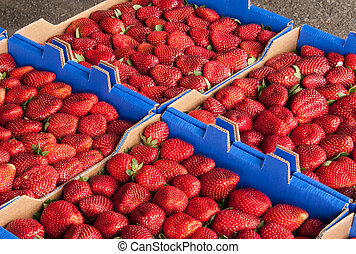 Bunches of Strawberries