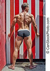 bundas, corporal, jovem,  Muscular, costas, atraente, Ao ar livre, visto, pernas, homem