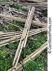 Bundle of bamboo stalks on the floor