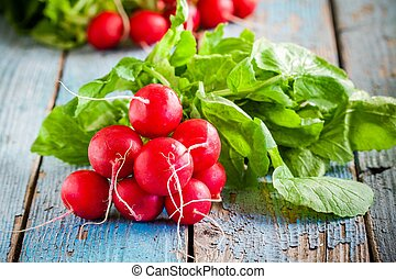 bundle of bright fresh organic radishes with leaves