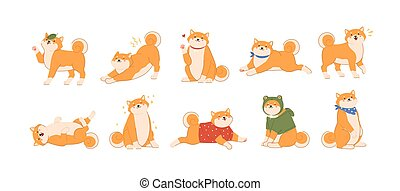 Bundle of cute kawaii dog of Japanese breed isolated on white background. Collection of adorable Shiba Inu or Akita Ken pup playing, barking, stretching, walking. Flat cartoon vector illustration