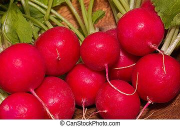 bundle of red radishes - closeup