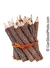 Bundle of tree trunk pencils