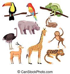 bundle of wild animals group scene