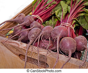 Bundles of beets are still with their tops and wrapped in bunches with rubber bands and placed in a wooden box.