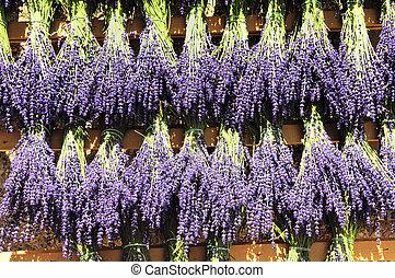 Bundles of lavender