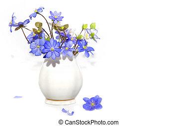 bundtet af, forår blomstrer
