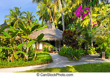 Bungalow and pathway - vacation background