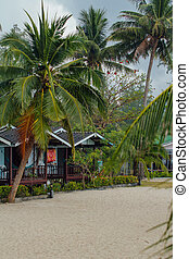 Bungalows in hotel on a tropical beach
