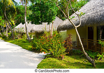 Bungalows in jungles