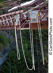 Bungy in New Zealand NZ NZL
