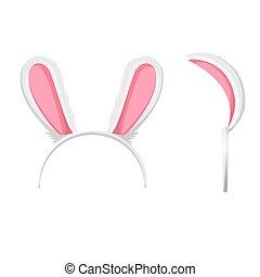 bunny, 年, 外形, 以及, 正面圖, 矢量, 插圖, 被隔离
