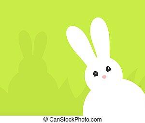 bunny., adorável, branca, páscoa