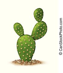 Bunny ears cuctus - Vector illustration of opuntia ...