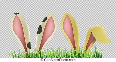Bunny ears hiding in grass on transparent background. Isolated rabbit ear, easter animal decoration. EPS10 vector.