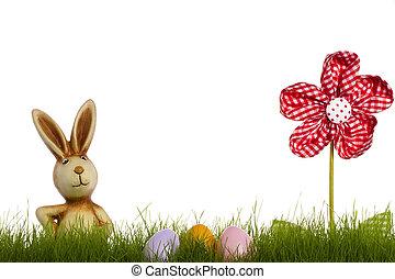 bunny easter, atrás de, capim, com, cortinado, flor, e, ovos páscoa, branco, fundo