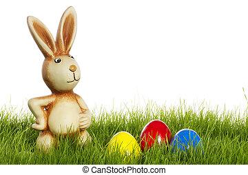 bunny easter, com, ovos páscoa, em, capim, com, fundo branco