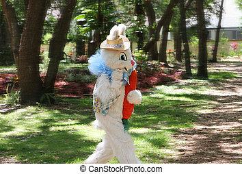 bunny easter, corrida
