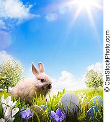 bunny easter, e, ovos páscoa, ligado, primavera, campo
