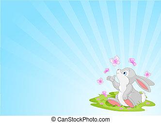 bunny easter, fundo