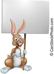 bunny easter, segurando, sinal