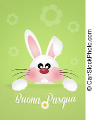 Bunny for Easter