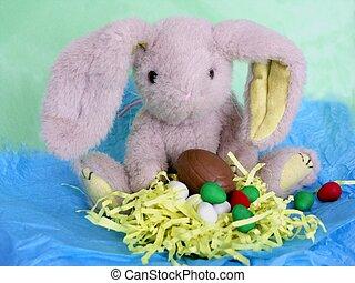 bunny n eggs