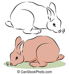 Bunny Rabbit Sniffing - An image of a bunny rabbit sniffing...