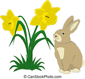 Bunny with daffodils - Illustration of a cute bunny with two...