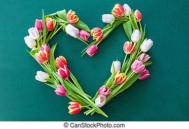 bunte, frische, tulpen