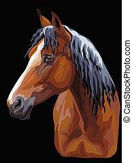bunte, pferd, portrait-10