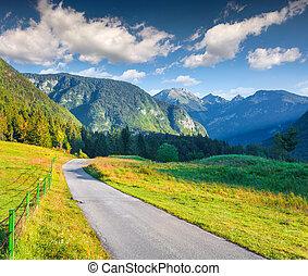 bunte, sommer, morgen, in, der, triglav, nationalpark