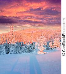 bunte, winter, sonnenaufgang, in, berge.