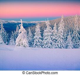 bunte, winterlandschaft, in, berge.