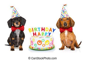 Buon Compleanno Cane In Pausa Chiuso Bulldog Candele Francese