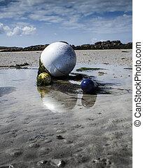 Buoy in low tide with green algae, coastline in Lilia, Brittany, France
