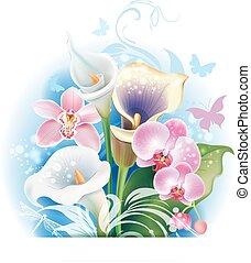 buquet, de, orquídea, e, calla, flores