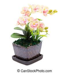 buquet, de, plástico, flowers., plástico, flores, isolado, branco, fundo