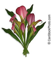 buquet, flores, lírios calla